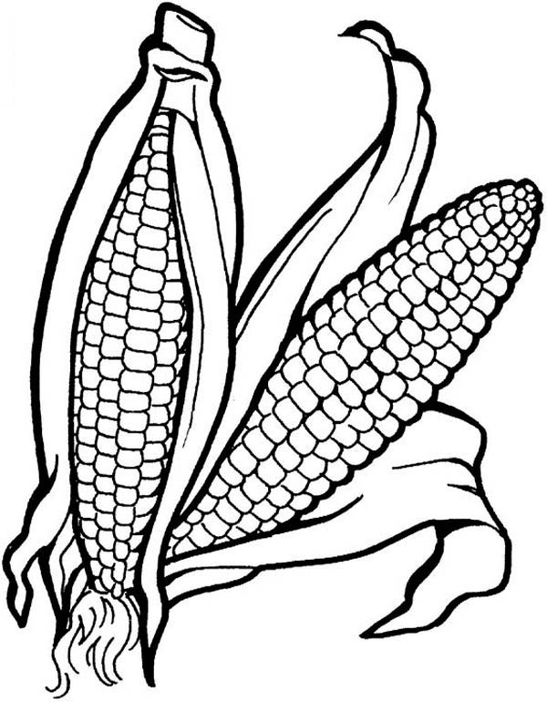 vegetables drawing for coloring basket of vegetables drawing at getdrawings free download coloring vegetables for drawing
