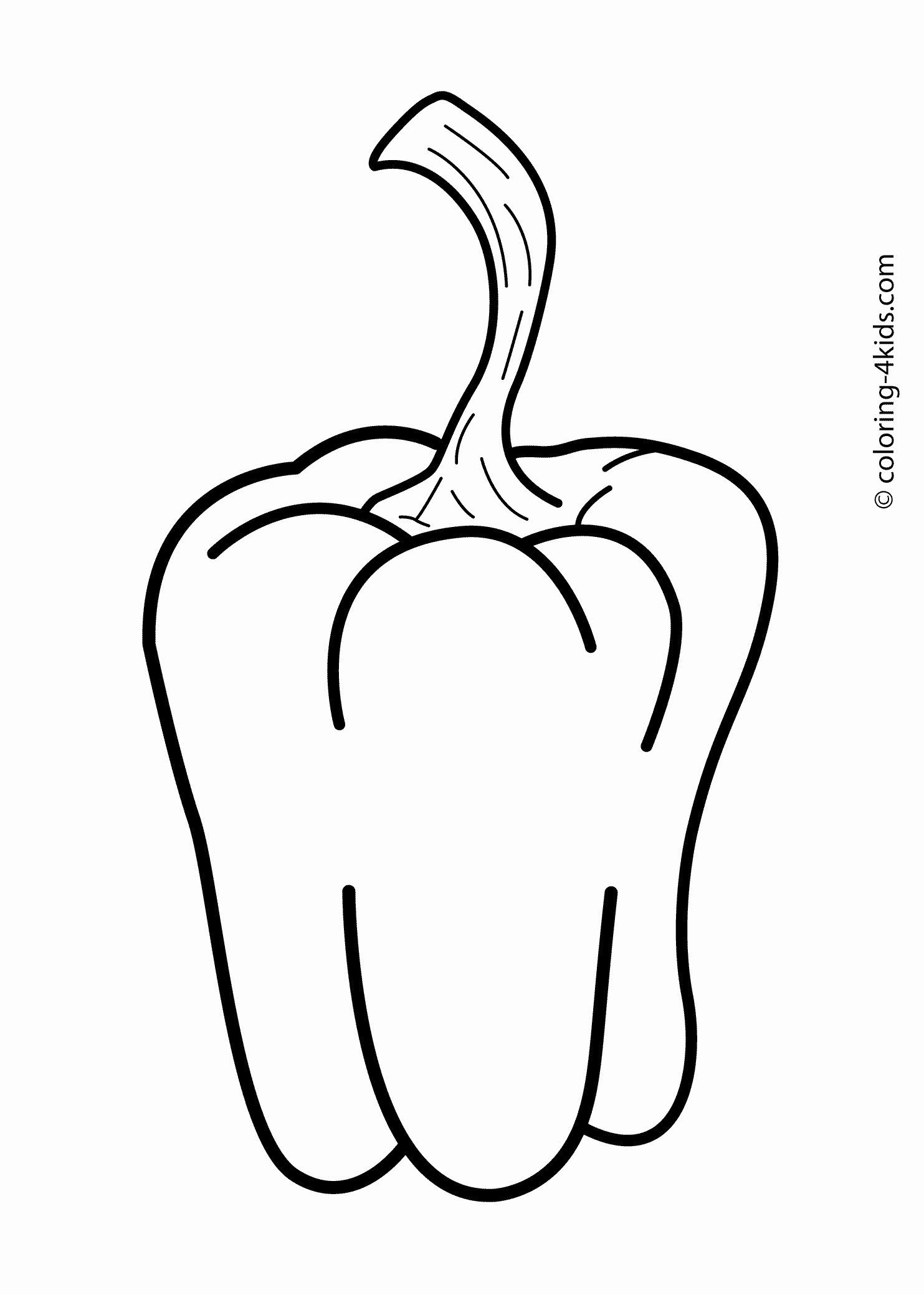 vegetables drawing for coloring vegetable coloring pages free download on clipartmag vegetables drawing for coloring