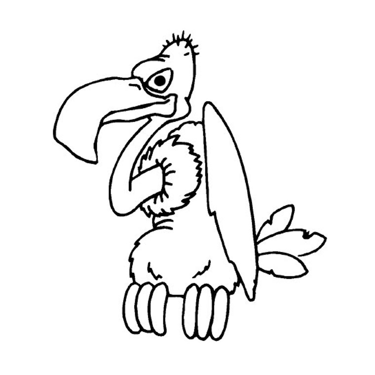 vulture coloring page coloring vulture vulture coloring page