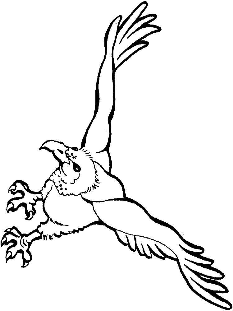 vulture coloring page vulture cartoon coloring page topcoloringpagesnet page coloring vulture