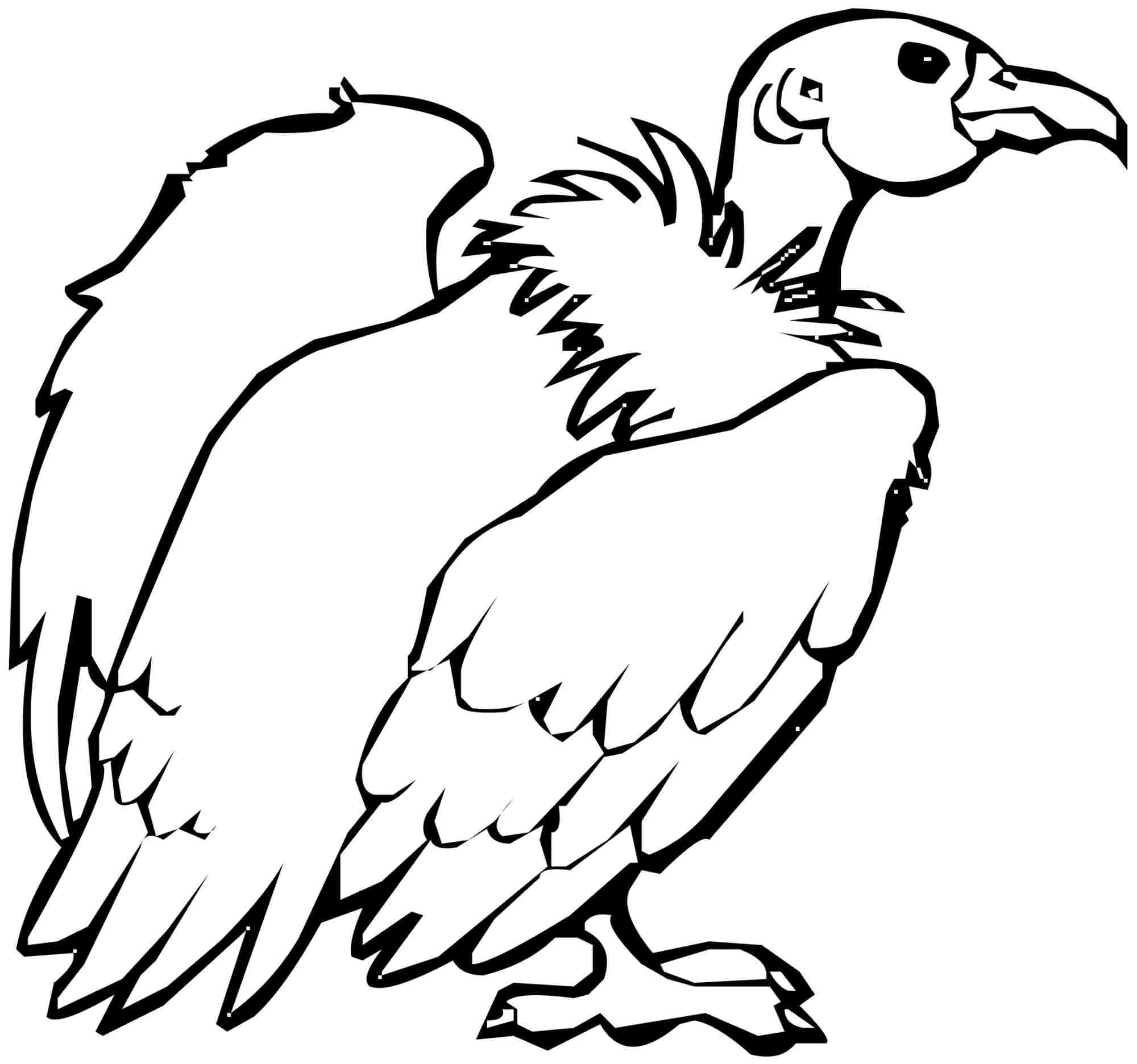 vulture coloring page vulture coloring pages preschool and kindergarten coloring vulture page