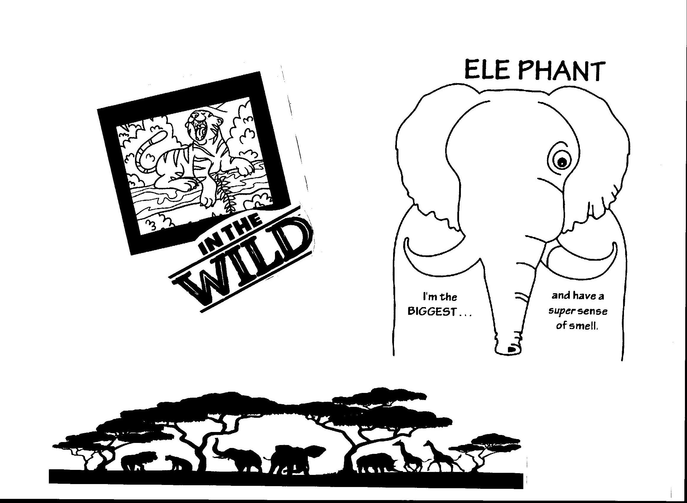 wild encounters vbs coloring pages coloryourownafricansafarivbsfuzzyposters encounters vbs pages coloring wild