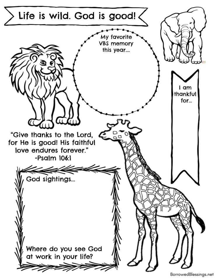 wild encounters vbs coloring pages wild cats in action drawing book di 2020 dengan gambar pages encounters vbs wild coloring