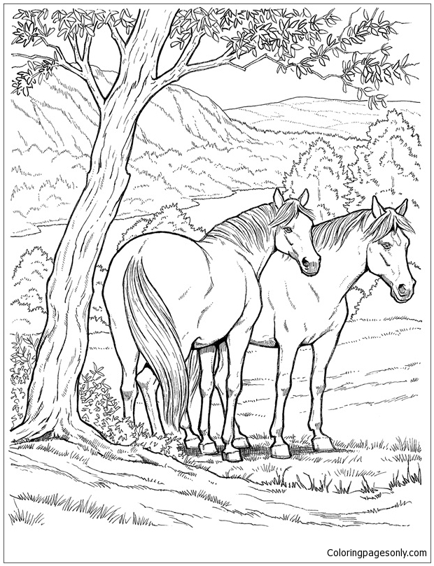 wild horse coloring pages coloring pages of horses printable free coloring sheets pages horse coloring wild