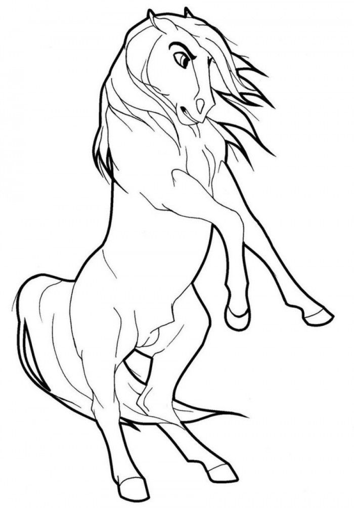 wild horse coloring pages coloring wild horse pages horse wild coloring