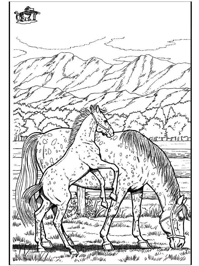 wild horse coloring pages free horse coloring pages wild pages coloring horse