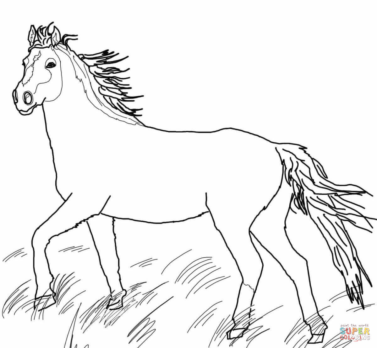 wild horse coloring pages wild horse free printable horse coloring pages girls coloring wild horse pages