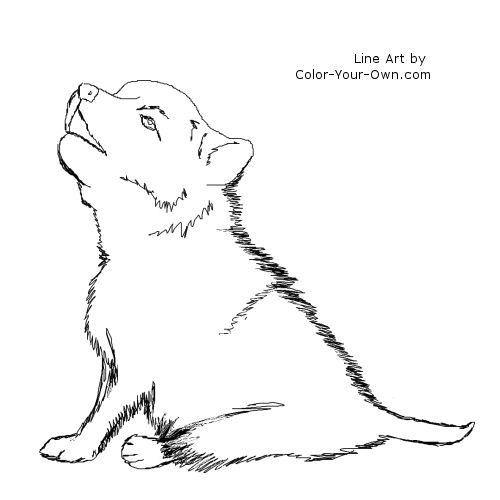 wolf pup coloring pages baby wolf pup coloring pages pup wolf pages coloring