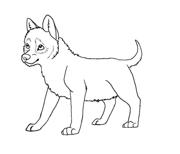 wolf pup coloring pages wolf puppy drawing at getdrawings free download wolf pup pages coloring
