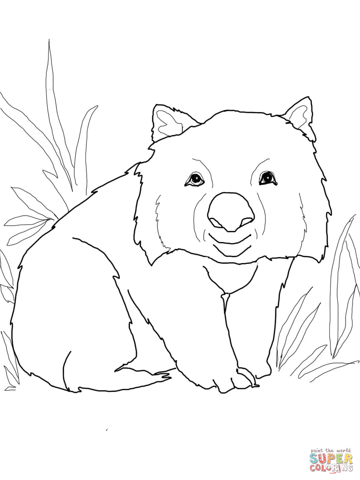wombat colouring common wombat coloring page free printable coloring pages wombat colouring