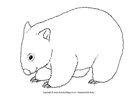 wombat colouring wombat scene colouring page coloring pages wombat colouring